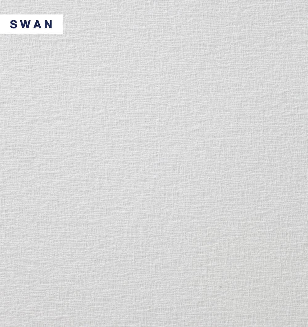 Skye - Swan.jpg