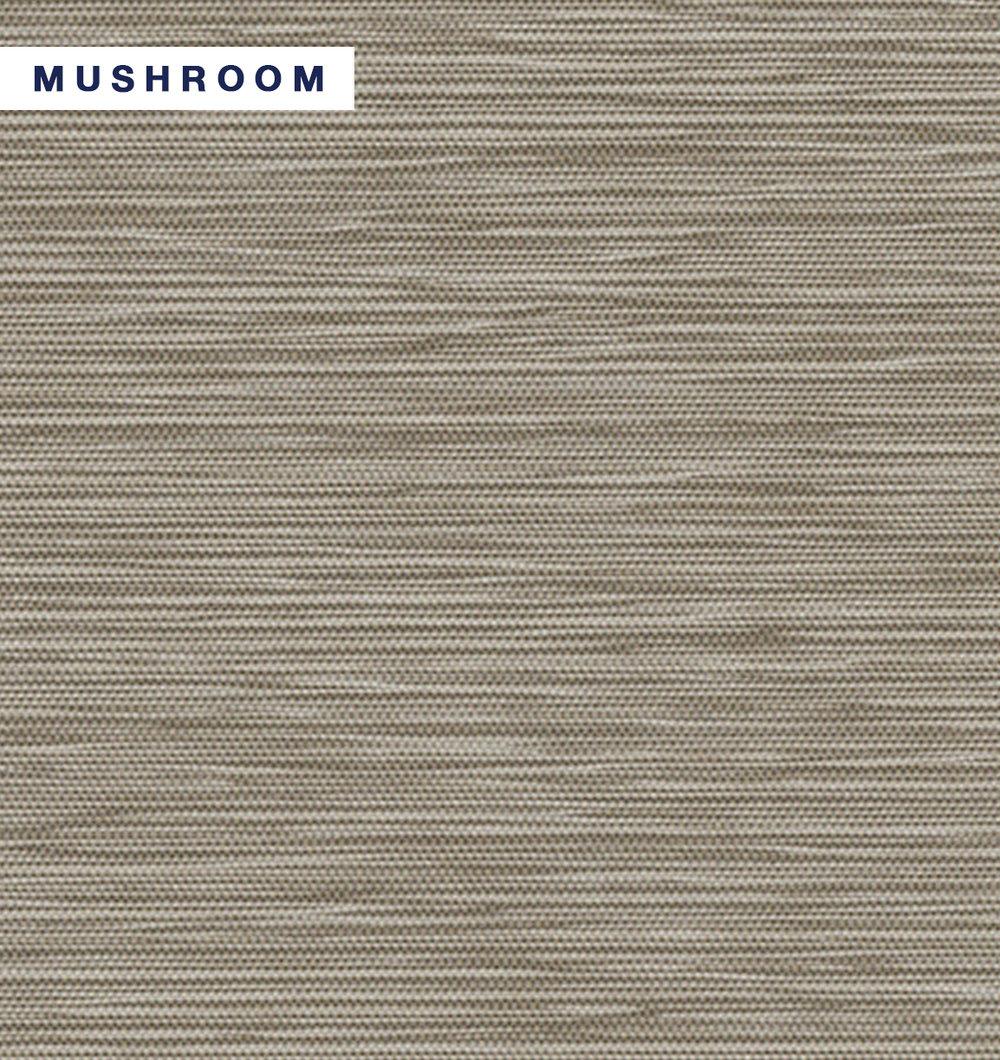 Tusk - Mushroom.jpg
