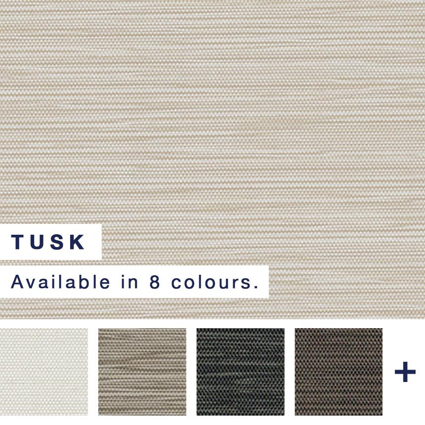 Tusk - Hero Web Image.jpg