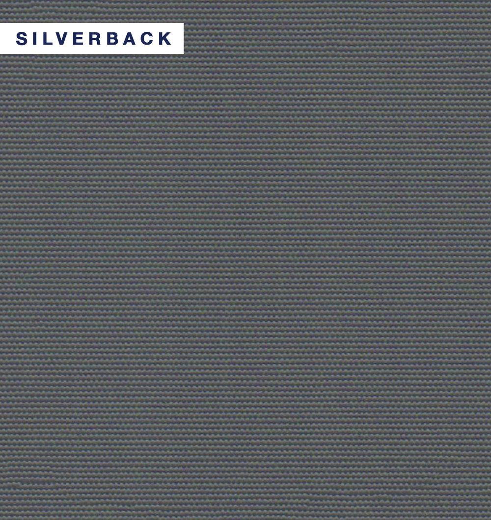 One Block - Silverback.jpg