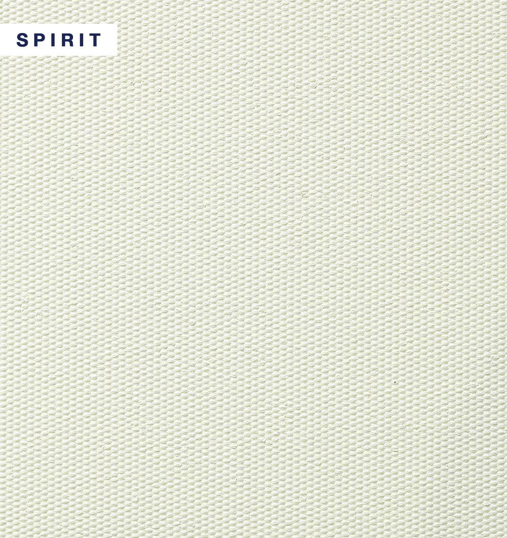 VIBE - Spirit.jpg