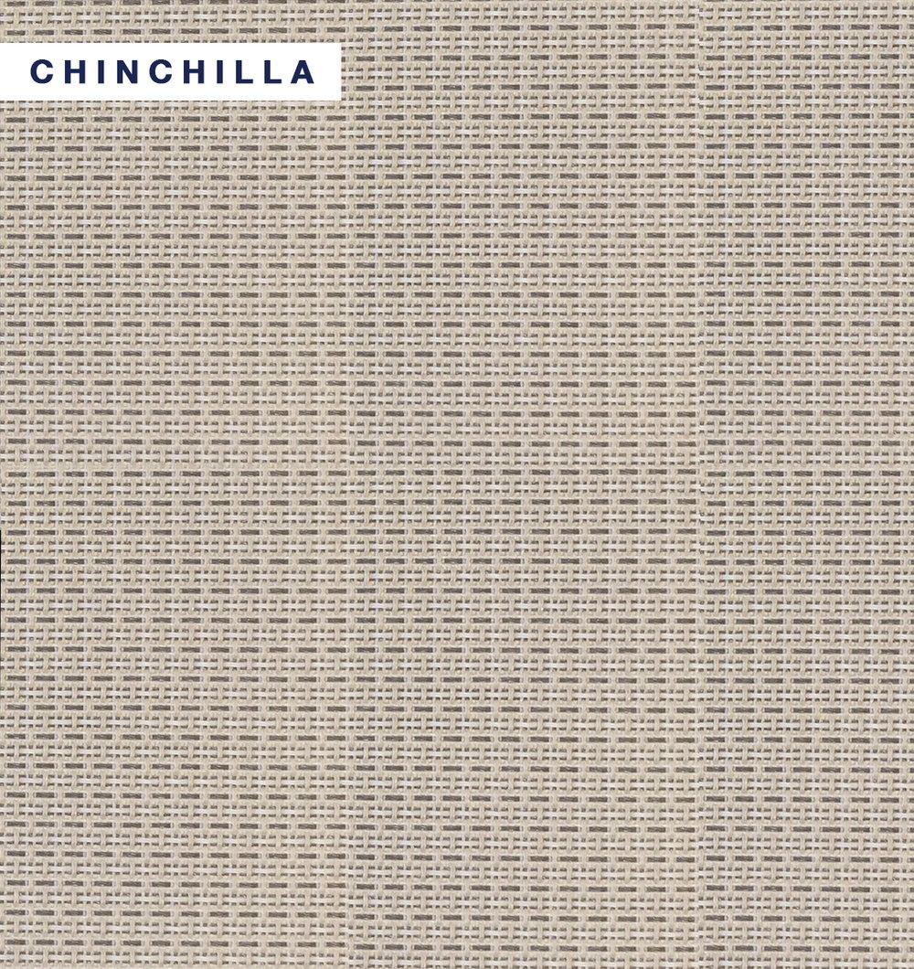 Taurus - Chinchilla.jpg