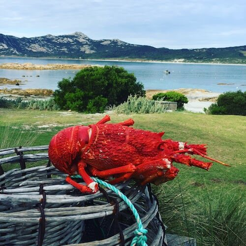 Flinders Island events