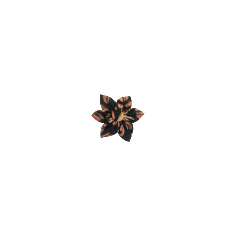 Hamby pinwheel.jpg