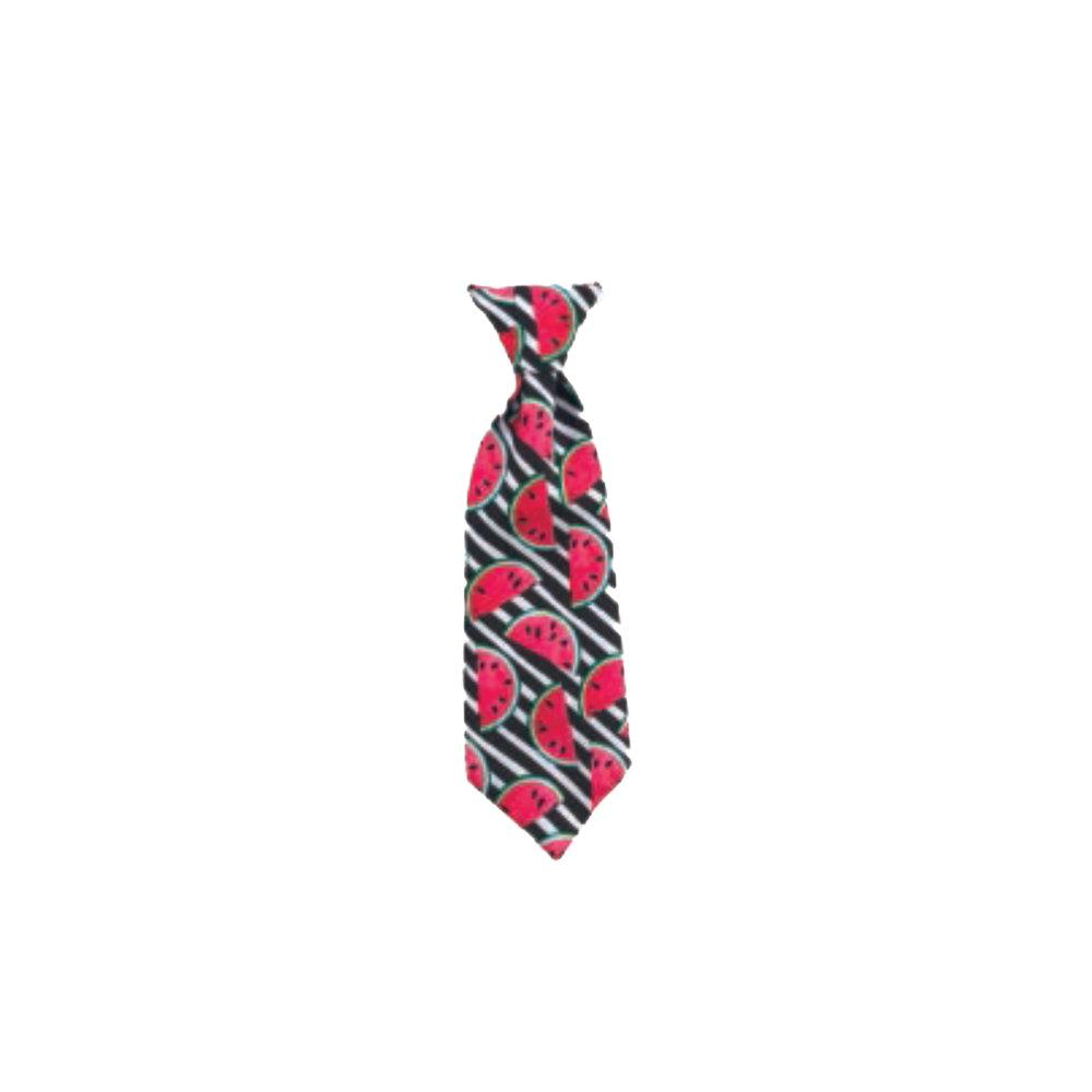 Watermelon Tie.jpg