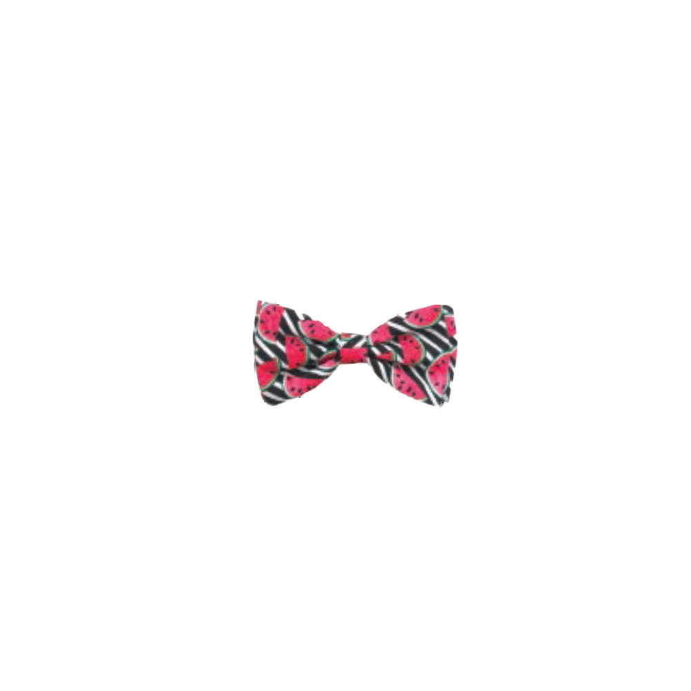 Watertmelon Bowtie.jpg