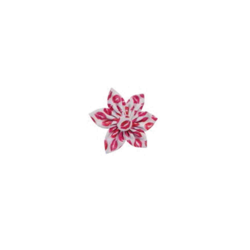 Lips pinwheel.jpg