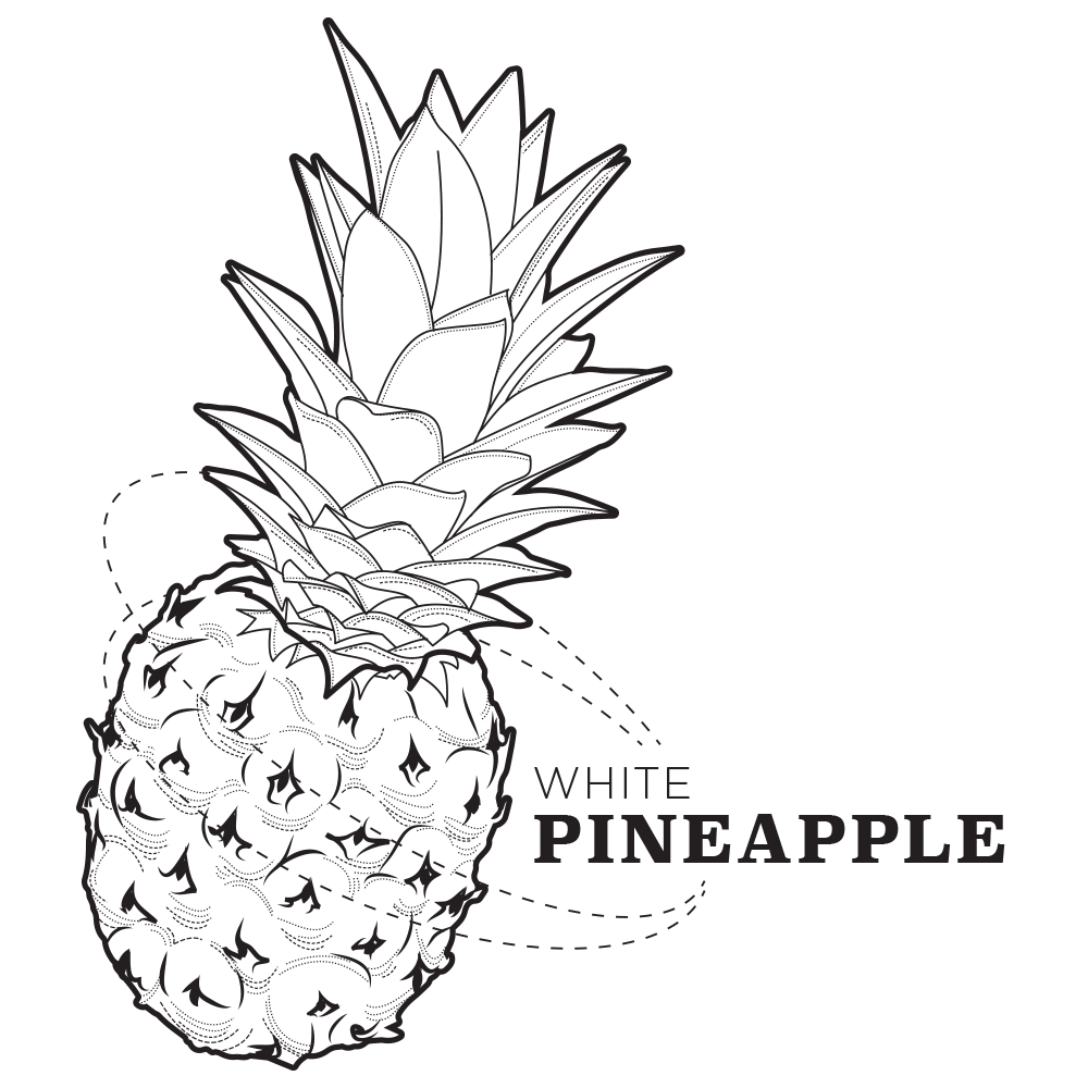 Ola-pineapple-ill.png