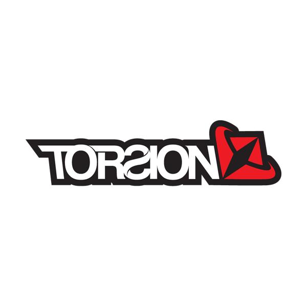 Torsion-logo-600x600.png