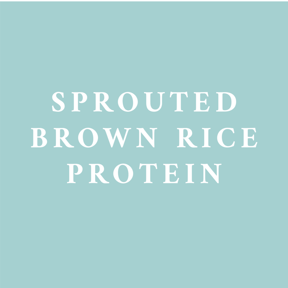 A plant-based protein source that is gluten- and dairy-free friendly.