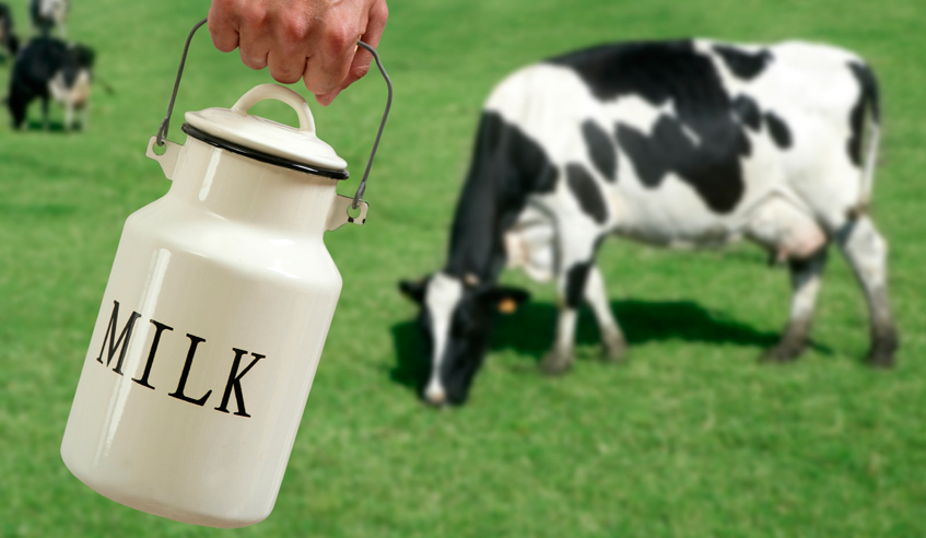 http://www.arounddb.com/guest-blogs/guest-blogswhich-cows-milk-is-best-for-you/