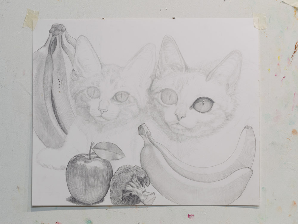 Kittens, pencil on paper 2017