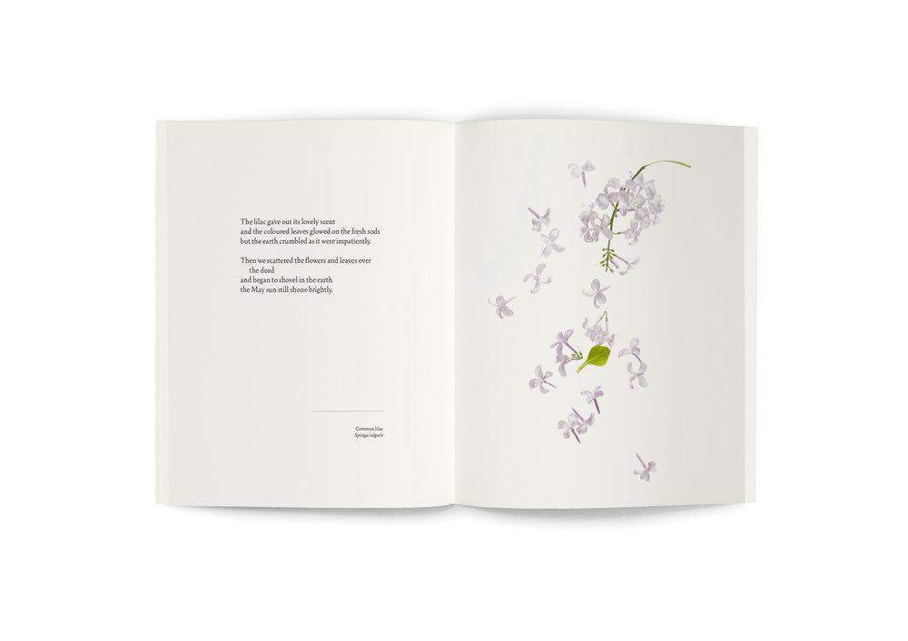 TRE_book_spread_Lilac.jpg