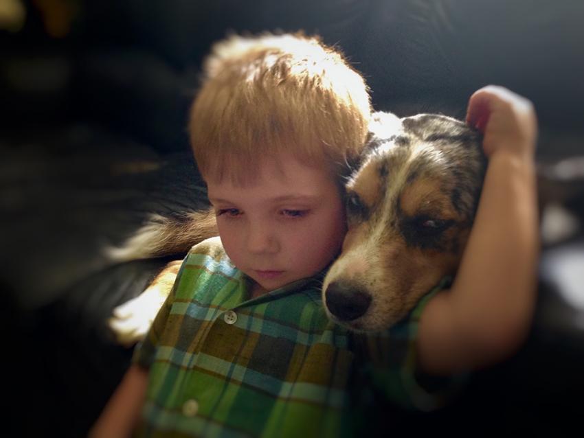 dog child sad 2.jpg