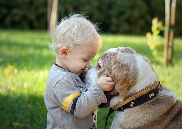 dog child sad 3.jpg