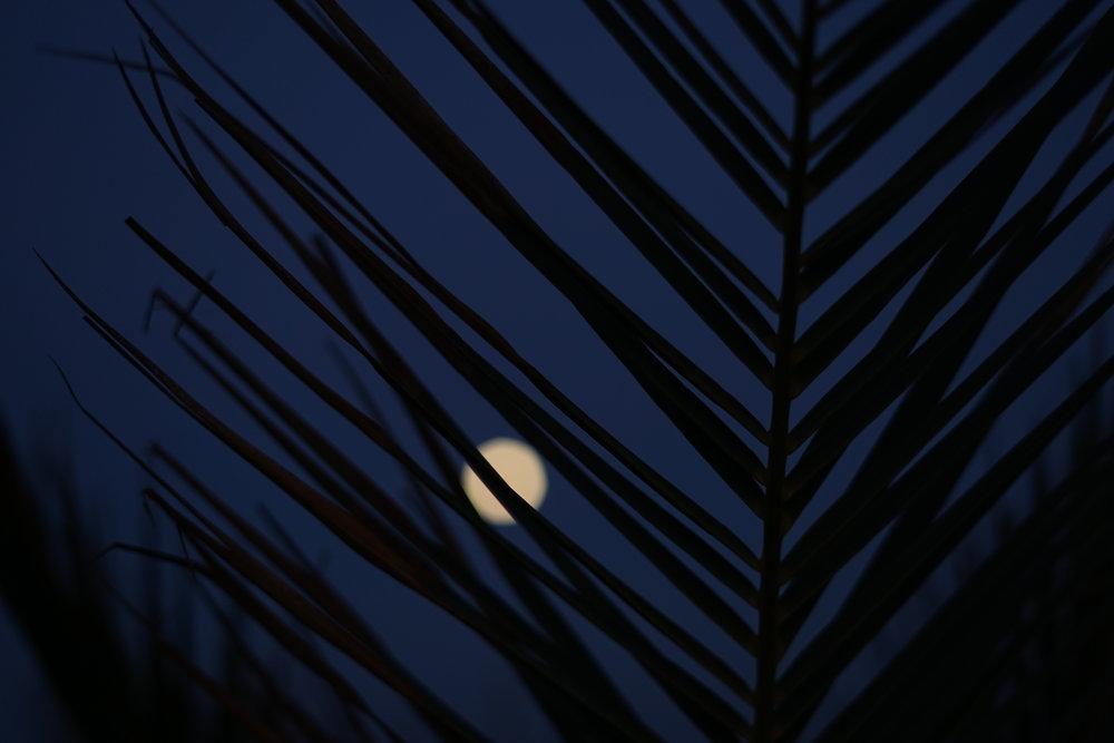 full moon @ sardinia