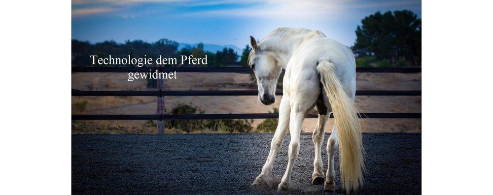EponaMIND+Horses-244-EditDeutsch.jpg