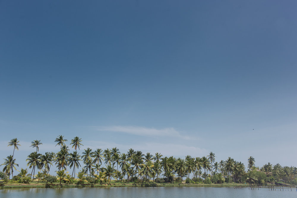 destination-wedding-photographer-Kerala-india-3.JPG