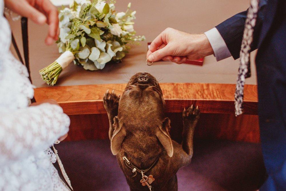 rising-star-of-wedding-photography-8.JPG