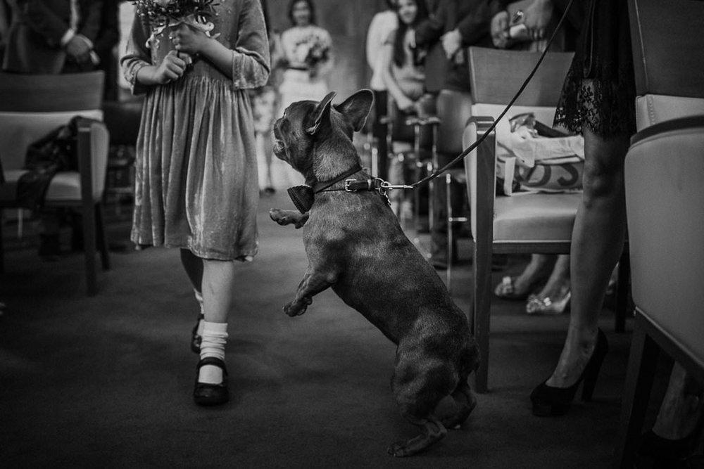 best-wedding-photography-by-motiejus-11.jpg