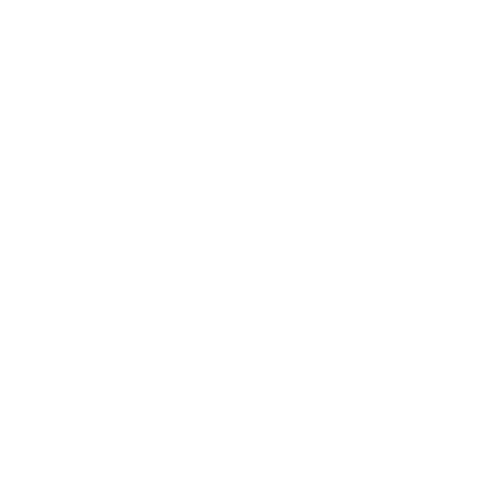 Endless Summer Fund