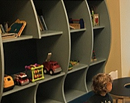 The Toy Shelves