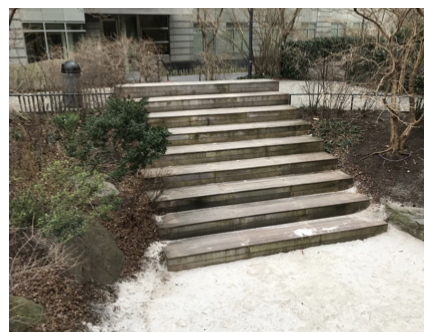 The Wooden Steps