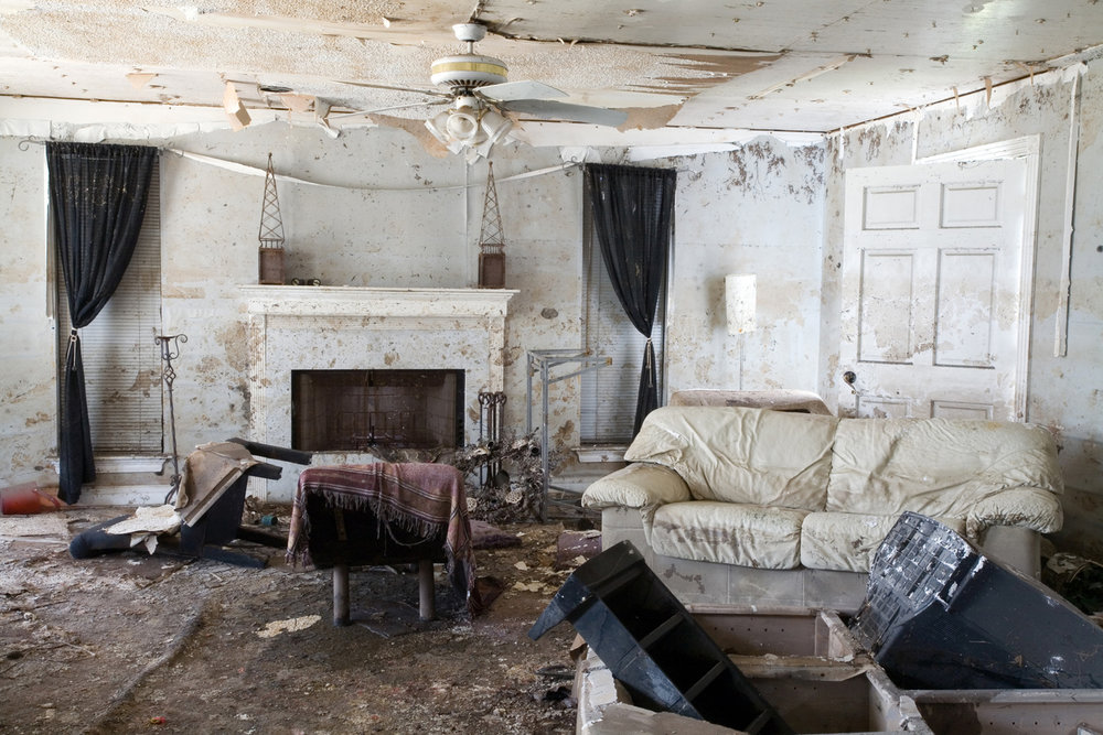 DC Restoration   Mould Damage    take action