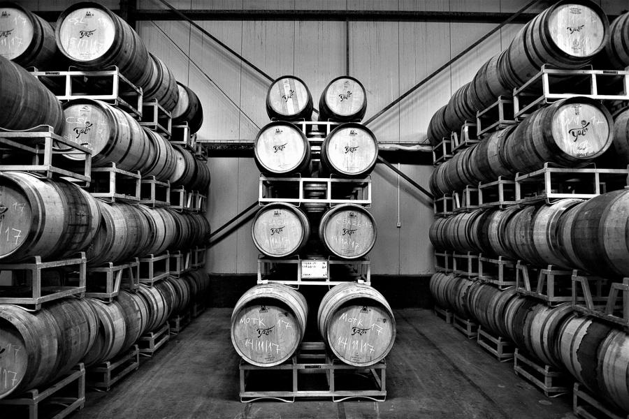 Yatir Winery, Tel Arad, Israel