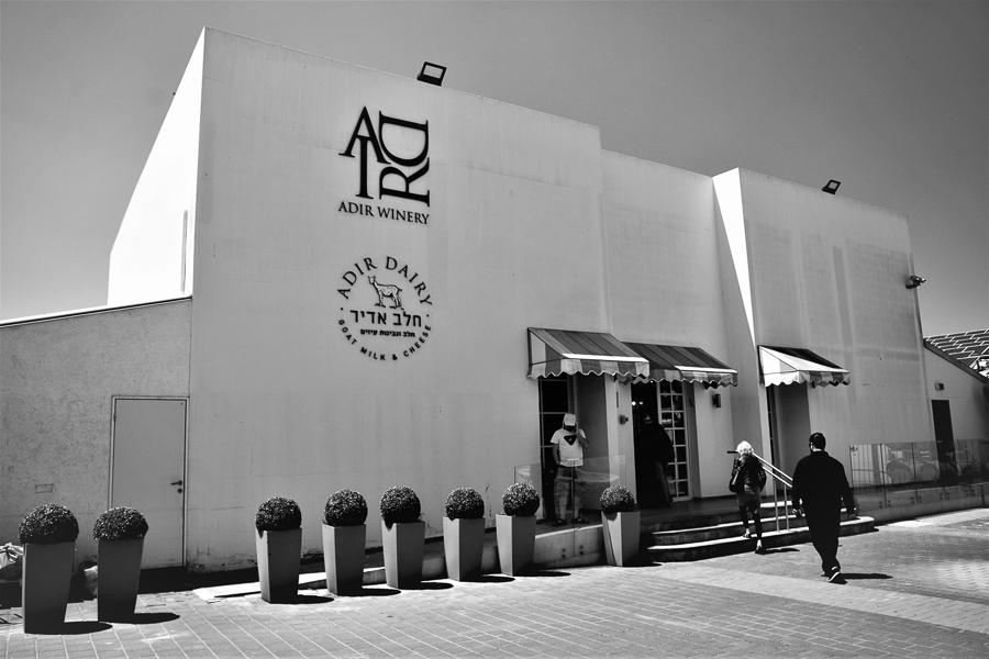 Adir Winery & Dairy, Kerem Ben Zimra, Israel.
