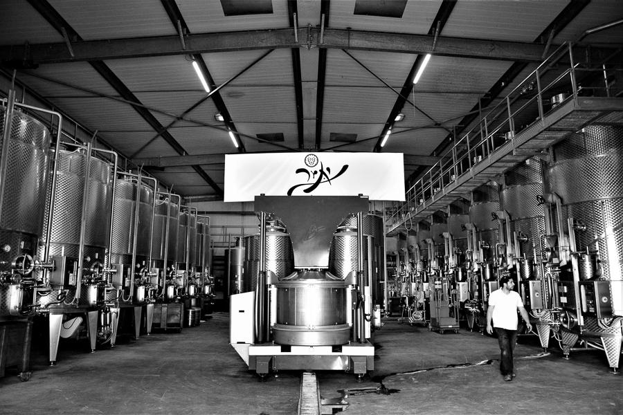 Yatir Winery, Tel Arad, Israel.