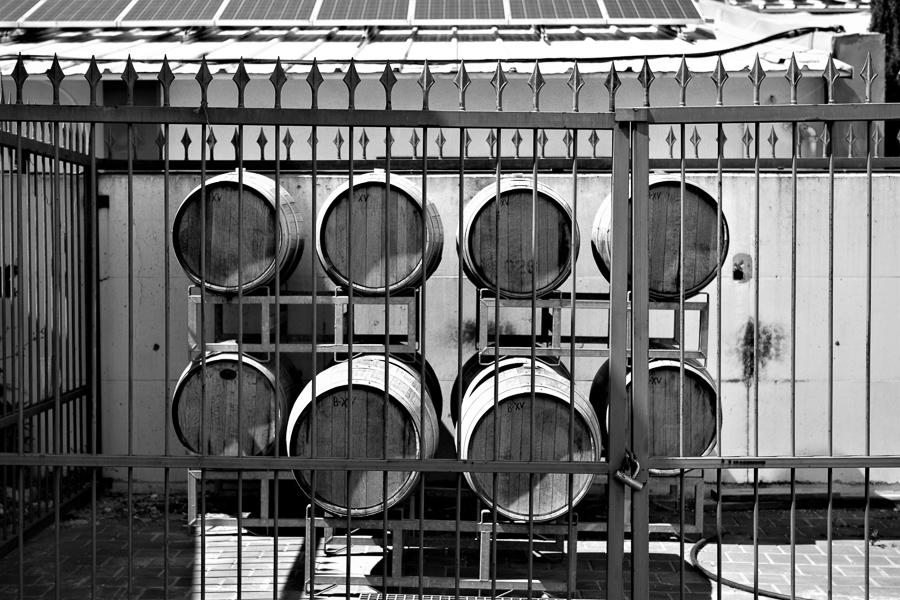 Der Süsswein Plot 98 der Adir Winery reift unter der Sonne im Freien. Ähnlich wie ein Vin Doux Naturel in Südfrankreich.