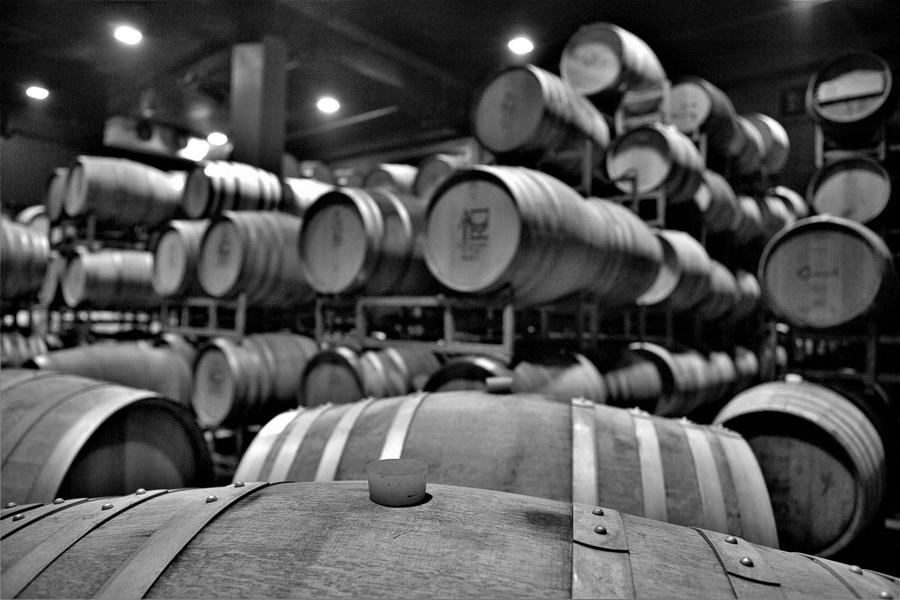 Keller der Adir Winery, ausgestattet mit einer audiovisuellen Show