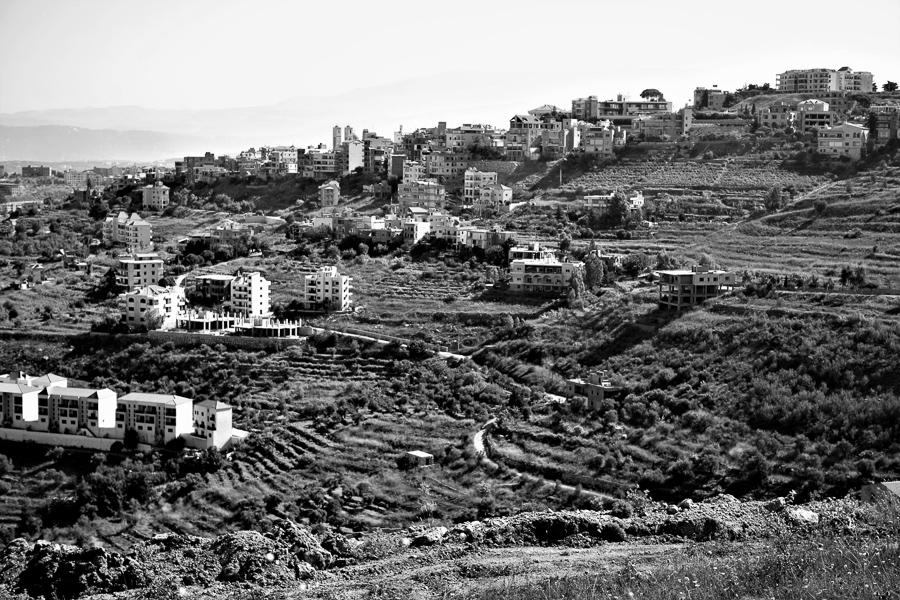 Ein Wechselspiel von Rebbergen und Wohnhäusern am Stadtrand von Bhamdoun.