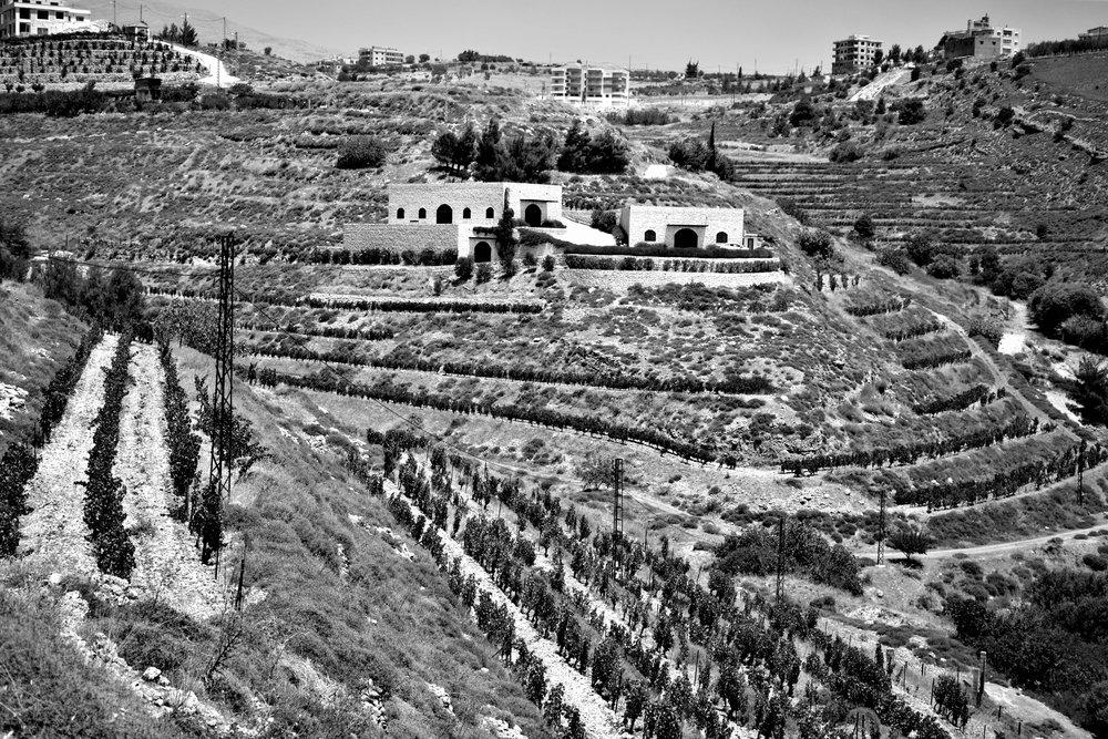 Blick auf die Domaine de Baal, Libanon