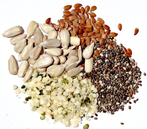 Global Seeds Market — Compare Industry Reports