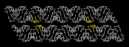 Figure 6  Two double helices after being properly aligned to form crossovers. Top helix is Helix 1. Bottom helix is Helix 2. The phosphate atoms and backbone and side (sugar/base) where the crossovers take place are identified in red and yellow, respectively.