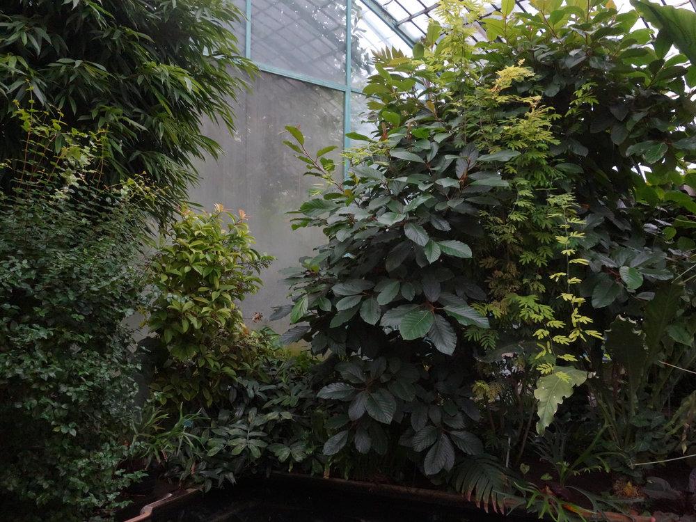 5_Le Jardin des Serres.jpg