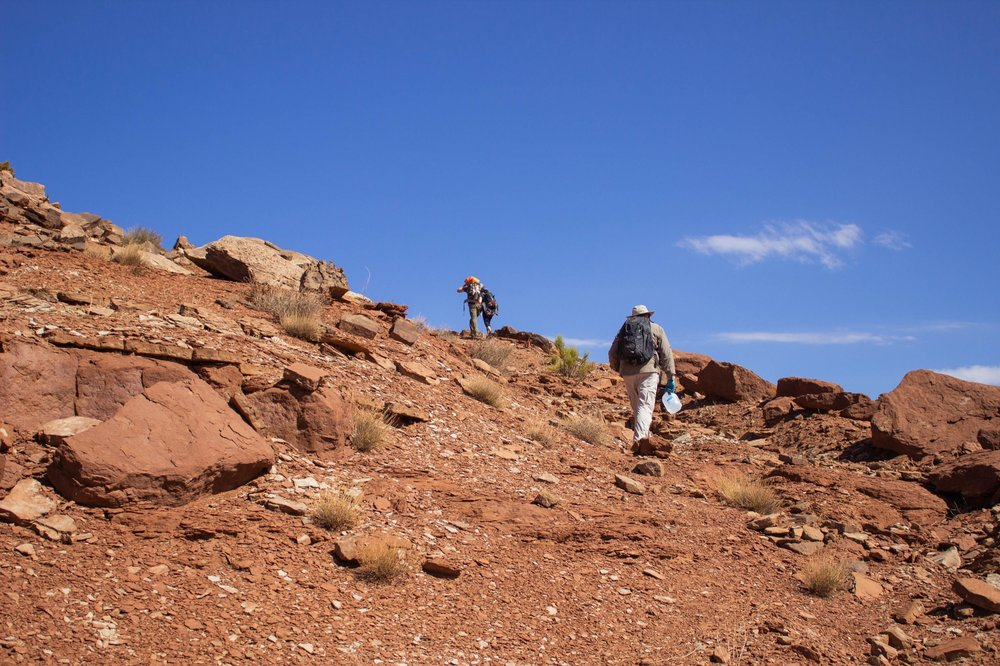 three people hike up a steep incline during a bright sunny day