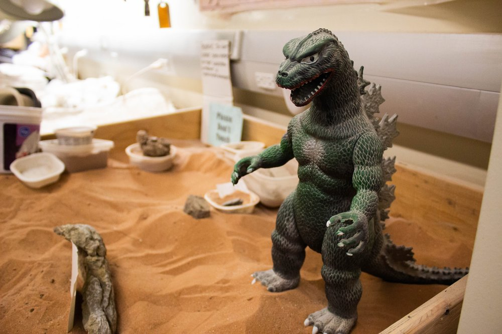 A toy Godzilla looks over broken fossils as they set in the sandbox. Photo by Lauren J. Young