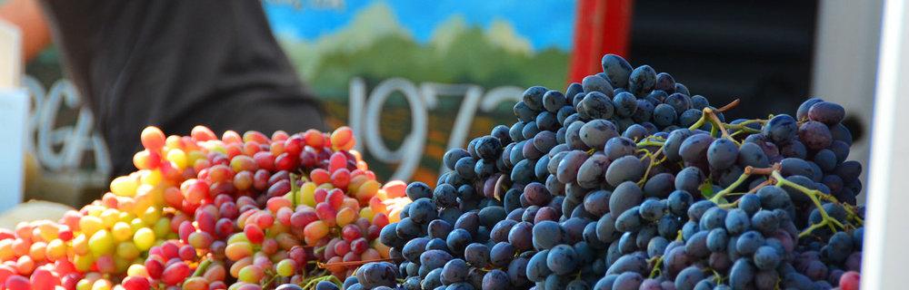 Thursday Farmers' Market - Summer 3:00 pm - 6:30 pm Winter 3:00 pm - 6:00 pm