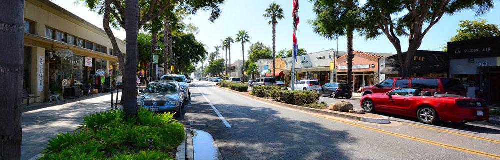 Carp_Downtown2.jpg