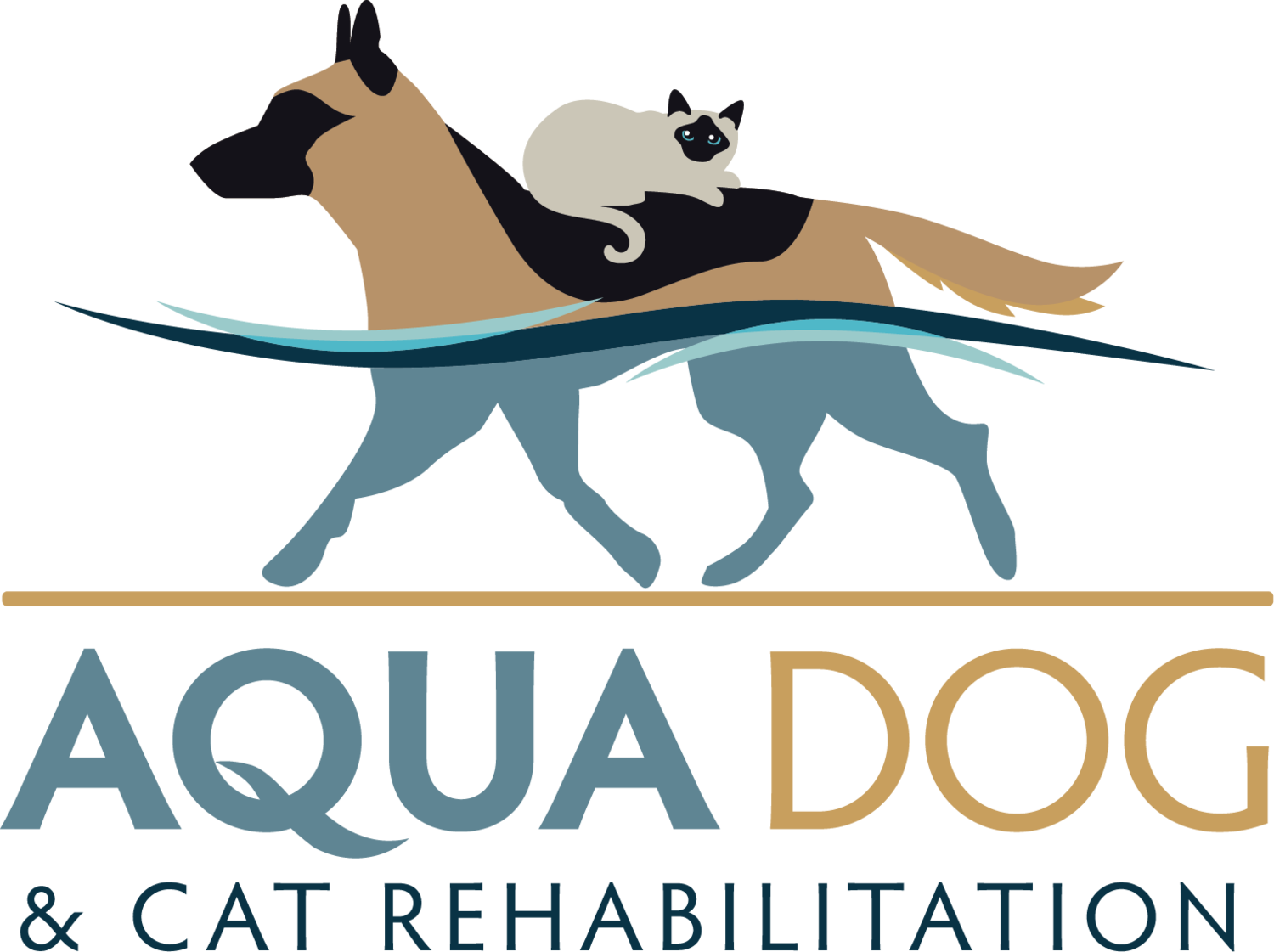 Aqua Dog and Cat Rehabilitation