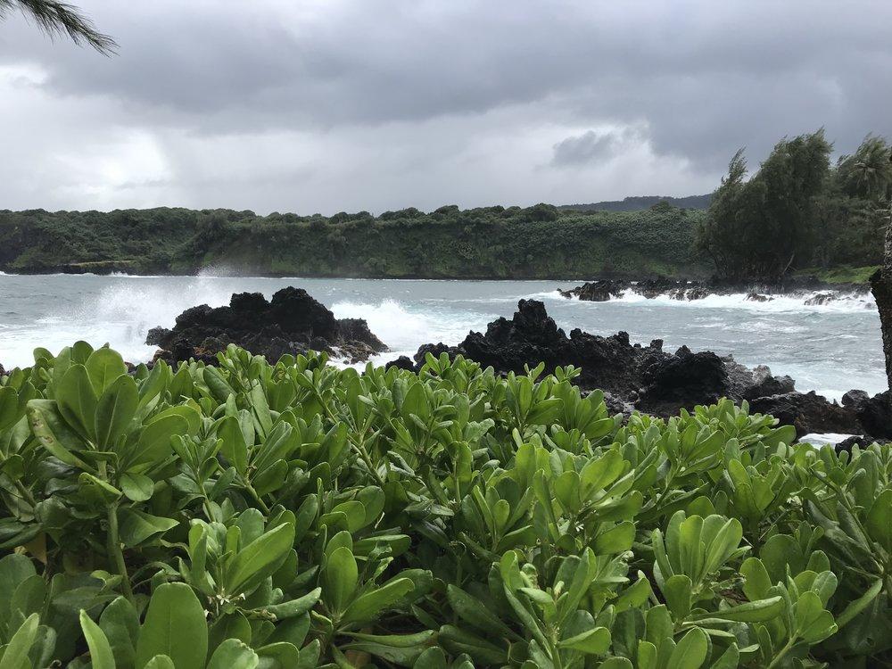 Where the sea meets the rocks - The road to Hana