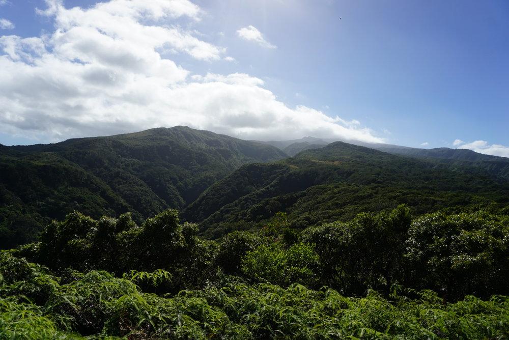 View from Mahana Ridge Trail