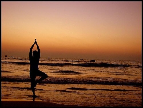 Activity - Yoga.jpg