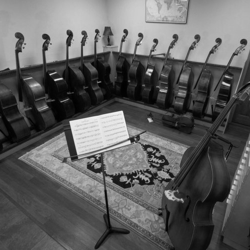 Terra Nova Violins (North Star) - 210-349-4700
