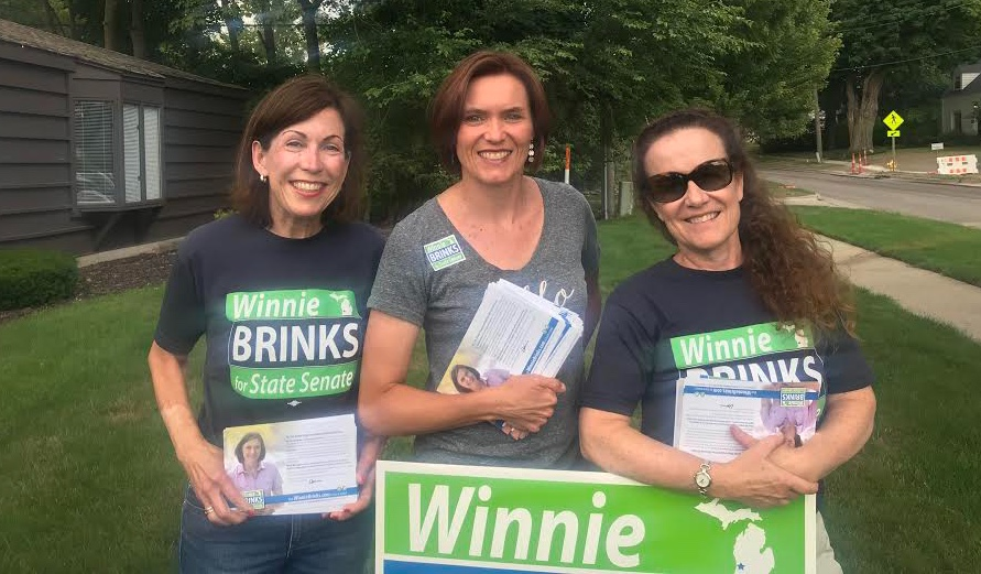 Sister District CA Peninsula Catherine Grundmann and Lisa Nash canvassing with Winnie Brinks in Michigan, July 2018.