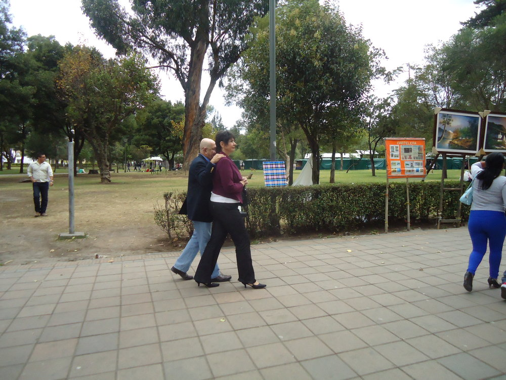 Dushko Petrovich, Regionalism, Installation in Parque El Ejido, Quito, Ecuador, 2013