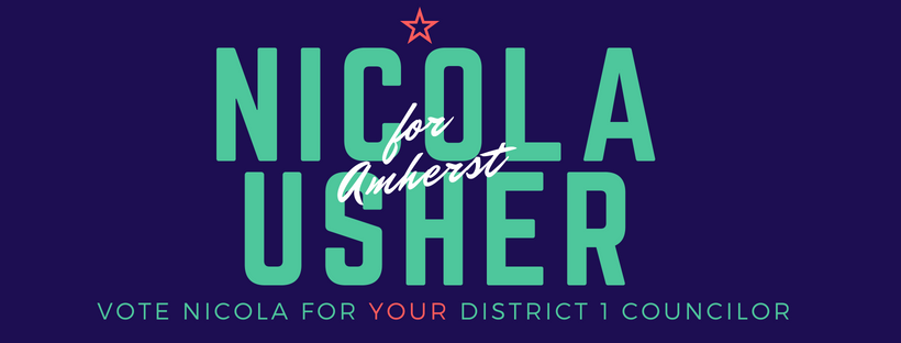 Nicola Usher for District 1 FB Cover.png